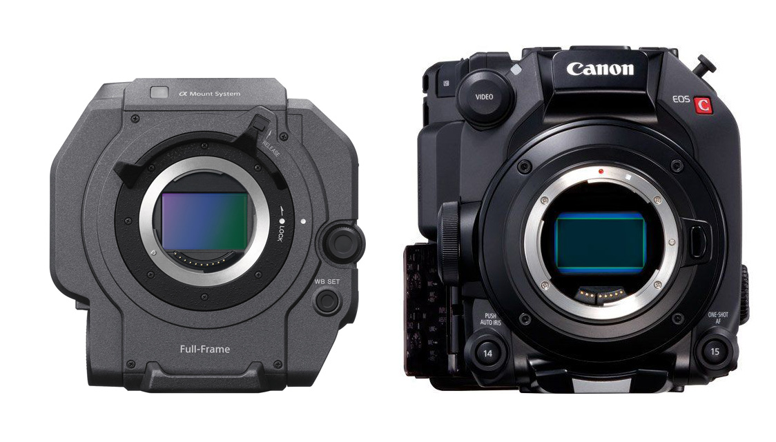 Canon C500 Mark II vs Sony FX9